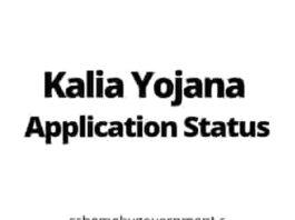 KALIA Yojana Application Status 2021